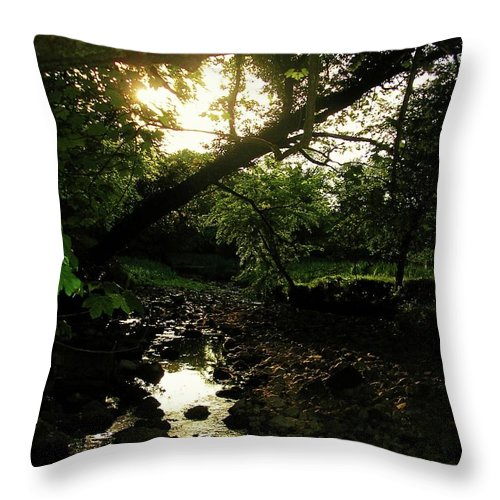 Landscape Throw Pillow featuring the photograph Doonally Co. Sligo Ireland. by Louise Macarthur Art and Photography