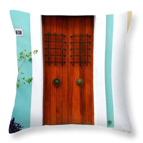 Door Throw Pillow featuring the photograph Door 51 by Perry Webster