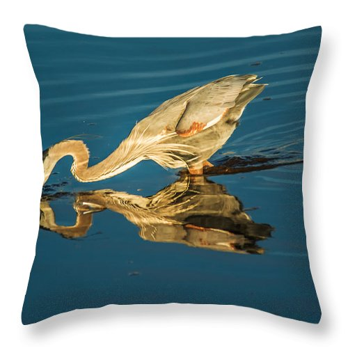 Central California Coast Throw Pillow featuring the photograph Double Dipper by Bill Roberts