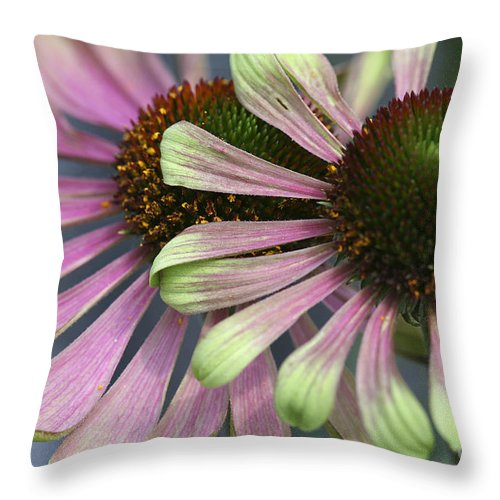Flower Throw Pillow featuring the photograph Double Vision Cone by Deborah Benoit