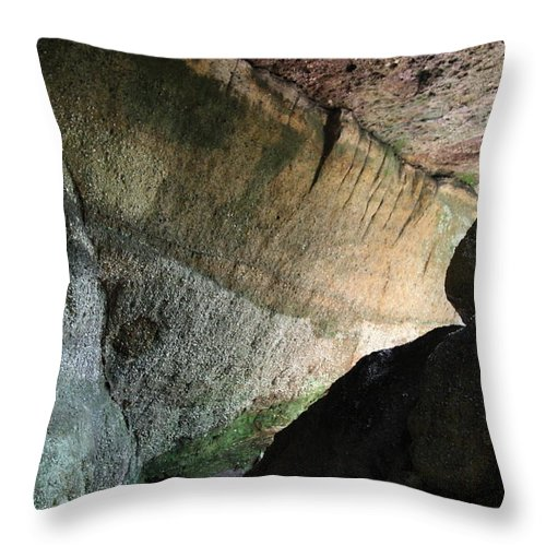 Stone Throw Pillow featuring the photograph Dove In Flight by Amanda Barcon