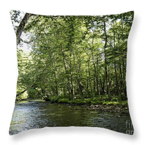 Smokey Throw Pillow featuring the photograph Down Beside Where The Waters Flow by Brenda Kean