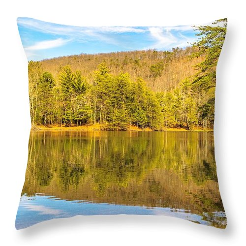 Water Throw Pillow featuring the photograph Down By The Lake by Keith Smith