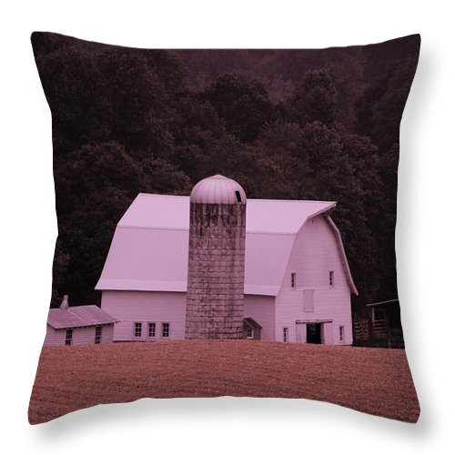 Barn Throw Pillow featuring the photograph Down On The Farm by Eric Liller