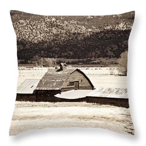 Americana Throw Pillow featuring the photograph Down On The Farm by Marilyn Hunt