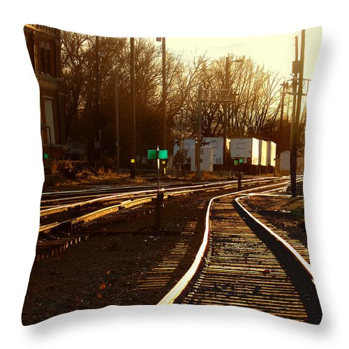 Landscape Throw Pillow featuring the photograph Down The Right Track 2 by Steve Karol