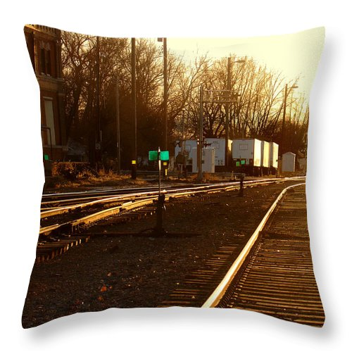 Landscape Throw Pillow featuring the photograph Down The Right Track by Steve Karol