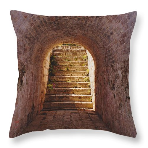 Brick Throw Pillow featuring the photograph Down To The Cellar by Michelle Powell