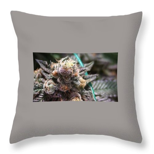 Marijuana Throw Pillow featuring the photograph Downtown Purple by Jaime Moreno