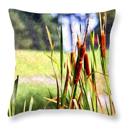 Dragon Fly Throw Pillow featuring the photograph Dragon Fly And Cattails In Watercolor by Gary Adkins