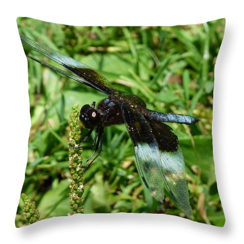 Dragonfly Throw Pillow featuring the photograph Dragonfly Close Up by Richard Bryce and Family