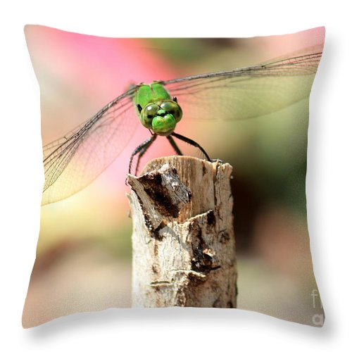 Dragonfly Throw Pillow featuring the photograph Dragonfly In The Petunias by Carol Groenen