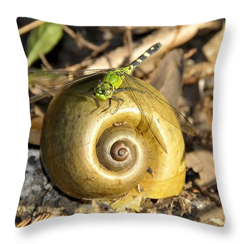 Dragonfly Throw Pillow featuring the photograph Dragonfly On Snail by David Lee Thompson