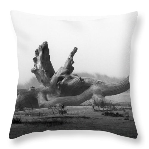 Dragon Throw Pillow featuring the photograph Dragonwood by Randall Ingalls