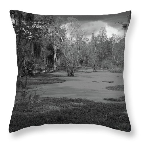 Swamp Throw Pillow featuring the photograph Drama In The Swamp II-black And White by Suzanne Gaff