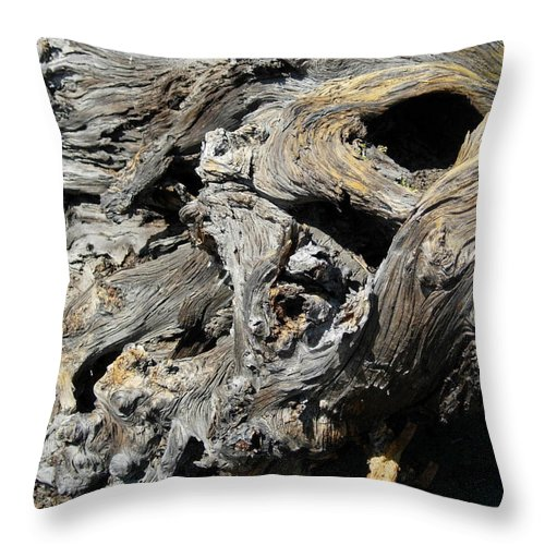 Wood Throw Pillow featuring the photograph Drawn Into The Wood no.8 by Stephanie H Johnson