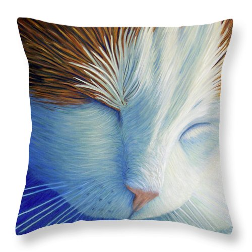 Cat Throw Pillow featuring the painting Dream Within A Dream by Brian Commerford