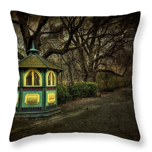 Central Park Throw Pillow featuring the photograph Dreamcatcher by Evelina Kremsdorf