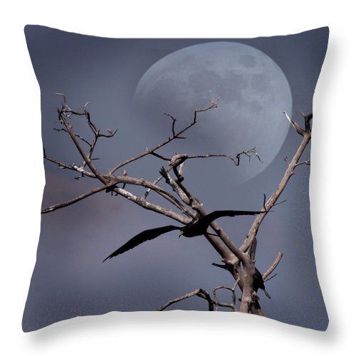 Moon Scape Throw Pillow featuring the digital art Dreams by Joseph G Holland