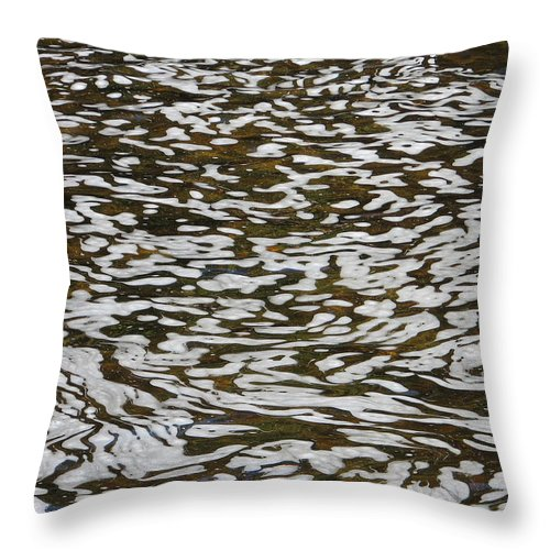 River Throw Pillow featuring the photograph Dreams by Kelly Mezzapelle