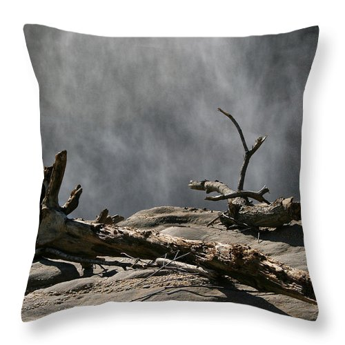 Wood Drift Driftwood Rock Mist Waterfall Nature Sun Sunny Waterful Glow Rock Old Aged Throw Pillow featuring the photograph Driftwood by Andrei Shliakhau