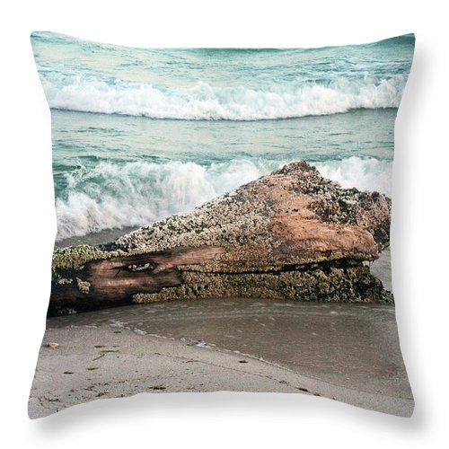 Driftwood Throw Pillow featuring the photograph Driftwood by David Campbell