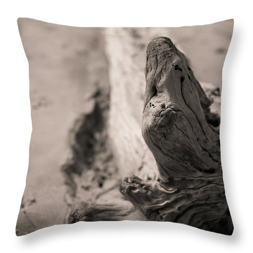 Driftwood Throw Pillow featuring the photograph Driftwood by Dustin K Ryan