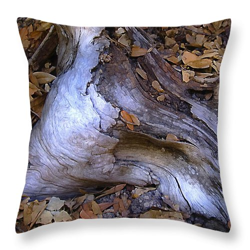 Landscape Throw Pillow featuring the photograph Driftwood In Lahonda by Karen W Meyer