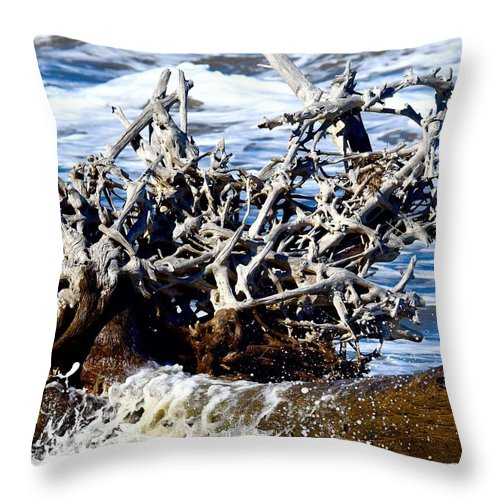 Jekyl Island Throw Pillow featuring the photograph Driftwood Lace by Janal Koenig