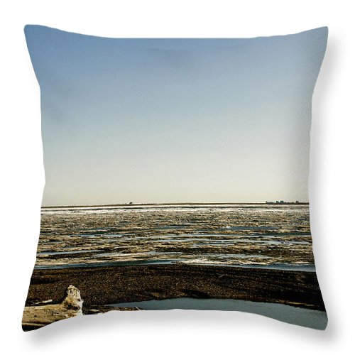 Driftwood Throw Pillow featuring the photograph Driftwood On Arctic Beach by Anthony Jones