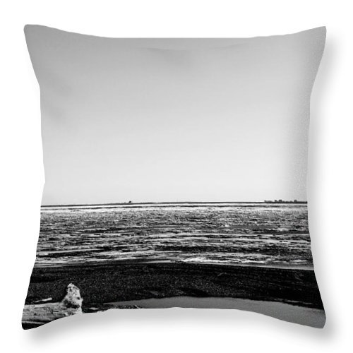 Landscape Throw Pillow featuring the photograph Driftwood On Arctic Beach Balck And White by Anthony Jones
