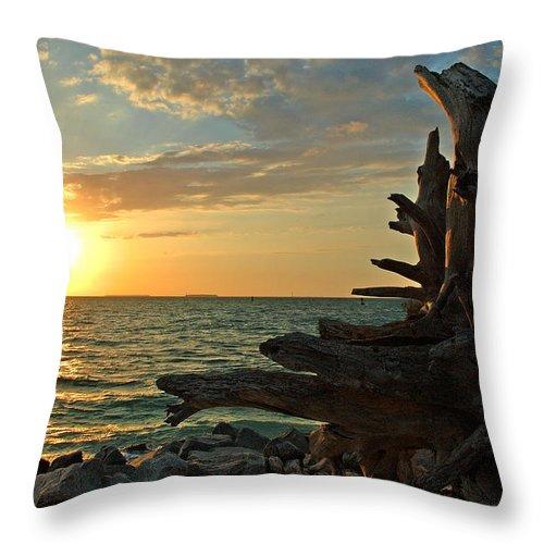 Sunset Throw Pillow featuring the photograph Driftwood Sunset by Susanne Van Hulst
