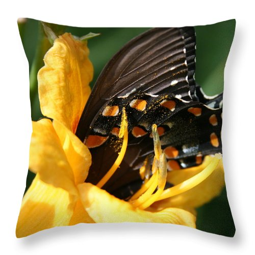 Nature Throw Pillow featuring the photograph Drink It In by Marla McFall