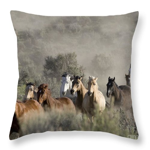 Horses Throw Pillow featuring the photograph Driving The Horses by Carol Walker