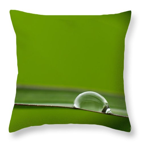 Water Throw Pillow featuring the photograph Drop Of Water by Silke Magino