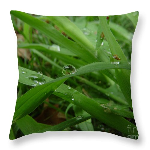 Water Droplet Throw Pillow featuring the photograph Droplets 01 by Peter Piatt