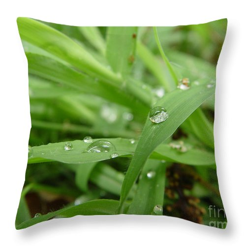 Water Droplet Throw Pillow featuring the photograph Droplets 02 by Peter Piatt