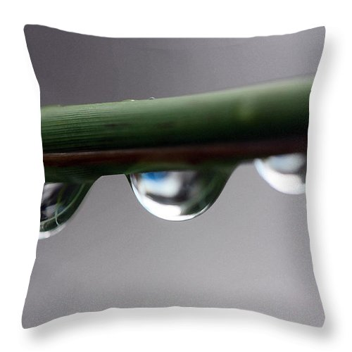 Raindrops Throw Pillow featuring the photograph Droplets by Mary Haber
