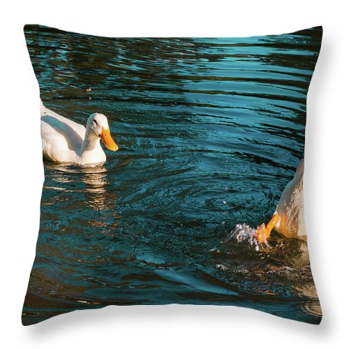Farm Life Throw Pillow featuring the photograph Dropped My Keys by Jim Love