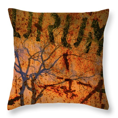 Branch Throw Pillow featuring the photograph Drum by Tara Turner
