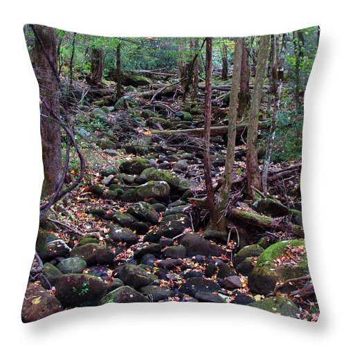 River Throw Pillow featuring the photograph Dry River Bed- Autumn by Nancy Mueller