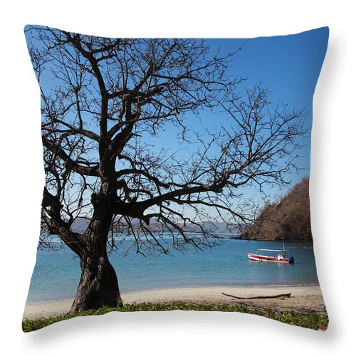 Dead Tree Dry Season Big Tree Costa Rica Throw Pillow featuring the photograph Dry Season by Sandy Campbell
