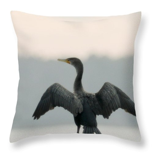 Bird Throw Pillow featuring the photograph Drying Out by Phill Doherty