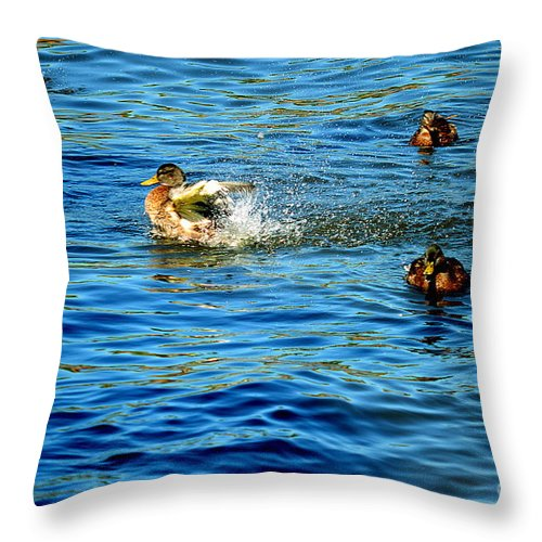 Throw Pillow featuring the photograph Ducks In Water by Terry Brackett