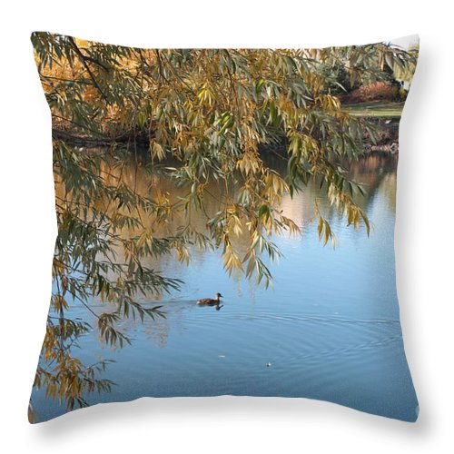 Autumn Pond Throw Pillow featuring the photograph Ducks On Peaceful Autumn Pond by Carol Groenen
