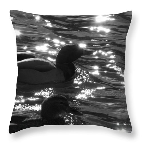 Ducks Throw Pillow featuring the photograph Ducks On The Canal by Jessica Wakefield
