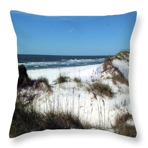 Water Throw Pillow featuring the photograph Dunes On St. Joseph by George Elliott
