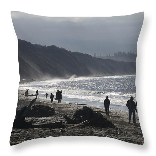 Beach Throw Pillow featuring the photograph Dungeness Spit by Chad Davis