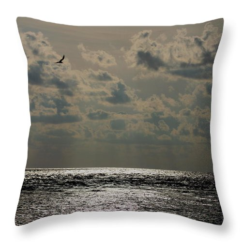 Sunset Throw Pillow featuring the photograph Dusk Sets In by Barbara Bowen