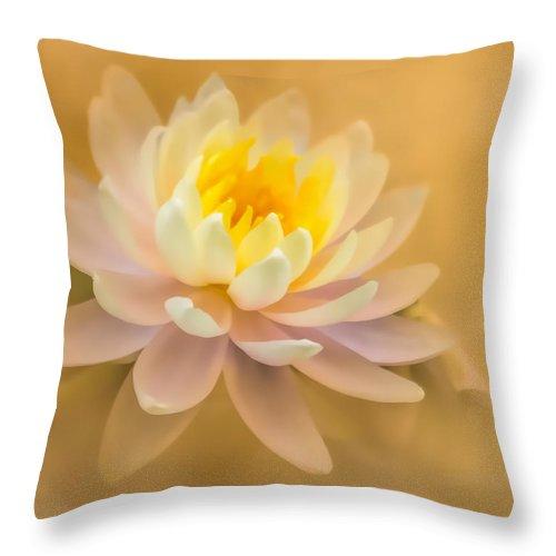 Flower Throw Pillow featuring the photograph Dusty Elegance by Cheryl Frischkorn